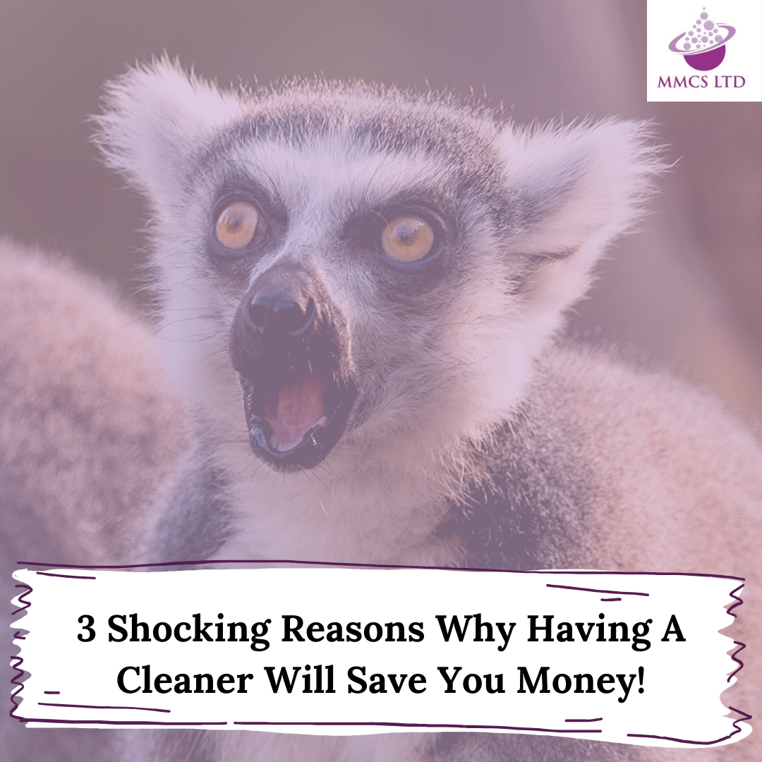 3 Shocking Reasons Why Hiring A Cleaner Will Save You Money!